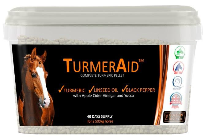 The Golden Paste Company TurmerAid 2kg