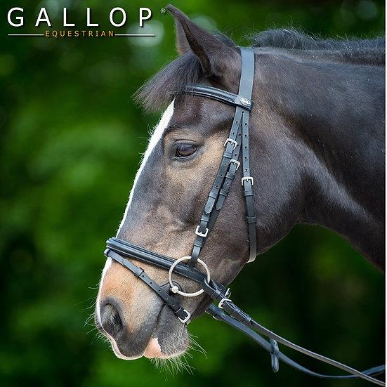Gallop Padded Bridle - Brown or Black
