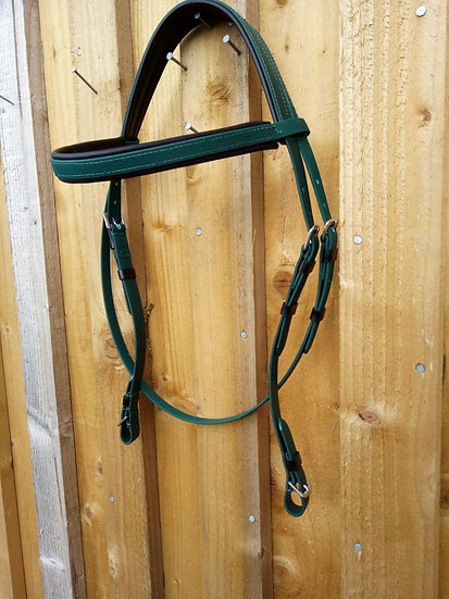 Traditional Bridle with No Noseband