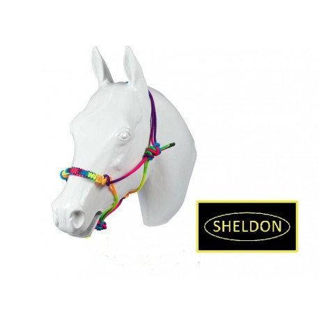 Sheldon Rainbow Knotted Rope Halter