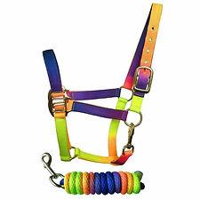 Sheldon Tutti Frutti Headcollar and Rope