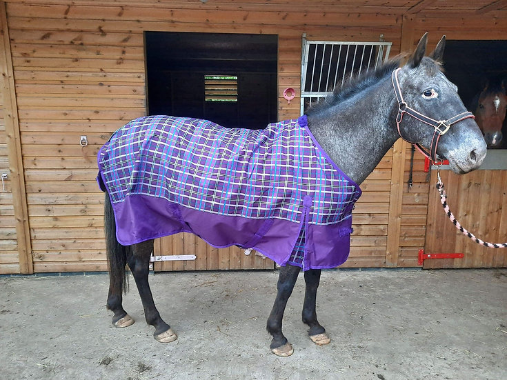 Sheldon Purple Check Lightweight Turnout Rug Standard Neck