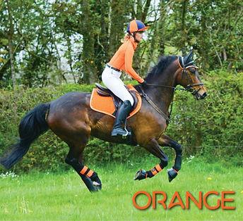 Tangerine Lifestyle.JPG