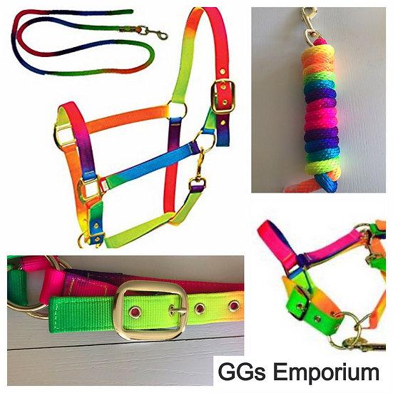 Sheldon Rainbow Headcollar and Lead Rope Set