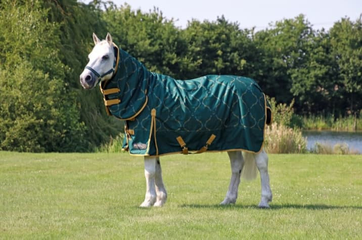 StormX Original Elegant Stirrup and Bit 200 Combi Turnout Rug