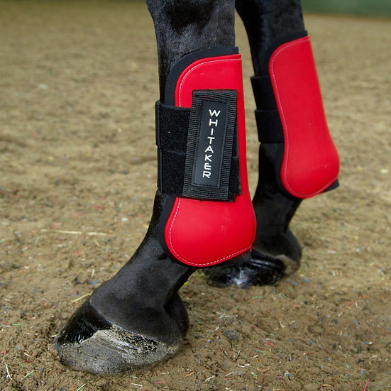 WHITAKER SKIPTON TENDON AND FETLOCK SET OF 4