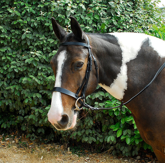 Windsor Leather Hunter Bridle With Wide Cavesson Noseband
