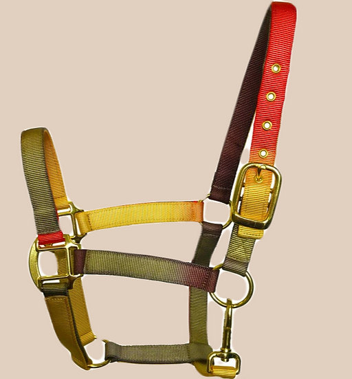 Sheldon Earth Tones Headcollar
