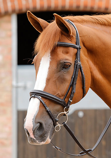 Premier Equine Delizioso Snaffle Bridle