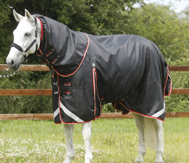 Premier Equine Buster 100g Turnout Rug with Classic Neck Cover