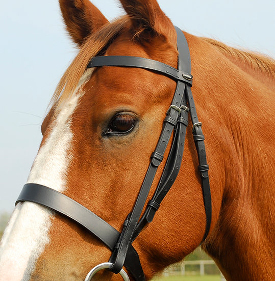 Rhinegold Heritage English Leather Hunter Bridle With Wide Cavesson Noseband