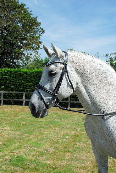 Rhinegold Italian Leather Anatomical Bridle With Flash Noseband Includes Smooth
