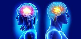 brain_activity_women-1038x497.jpg