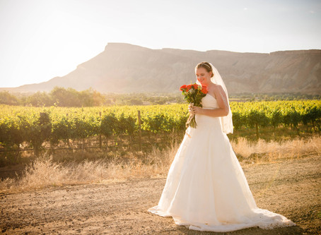 Amanda Bridal | Palisade Bridal Wedding Photography