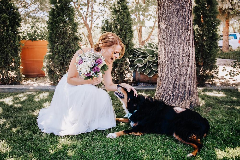 Dog friendly wedding Palisade Colorado Maison la Belle View wedding venue