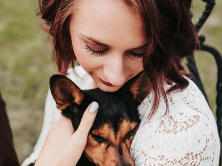 Can we invite our dog to the wedding?  Tips for having a dog-friendly wedding day