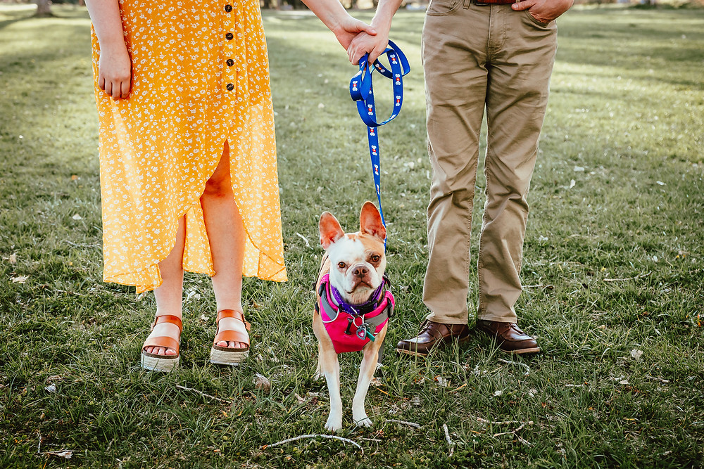 Palisade Colorado Engagement Photography with dog