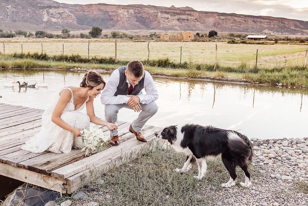Wedding day dog photos bride and groom Fruita Colorado dog friendly wedding