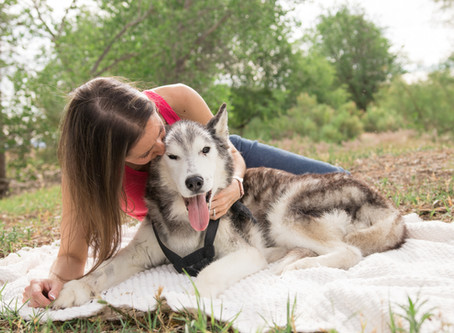 Vanessa + Juneau | Grand Junction Family Pet Photography