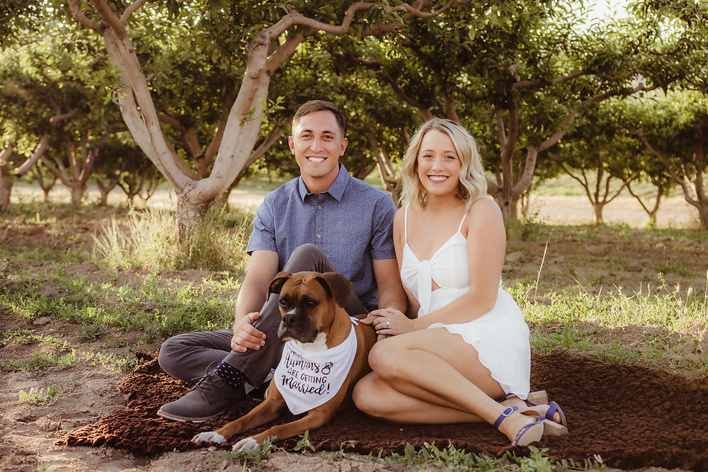 Palisade Colorado engagement photos with dog peach orchard