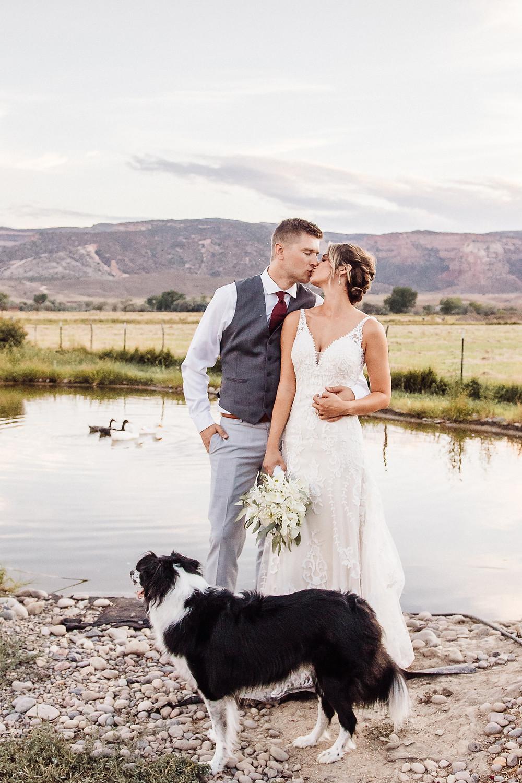 Wedding day dog photos Fruita Colorado dog friendly wedding