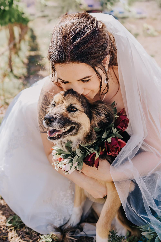 Bride kisses dog Mt Garfield Palisade Colorado dog friendly wedding