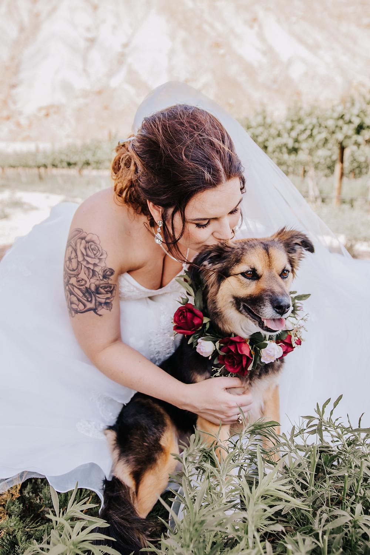 Bride kisses dog friendly wedding tips Palisade Colorado Wine Country Inn