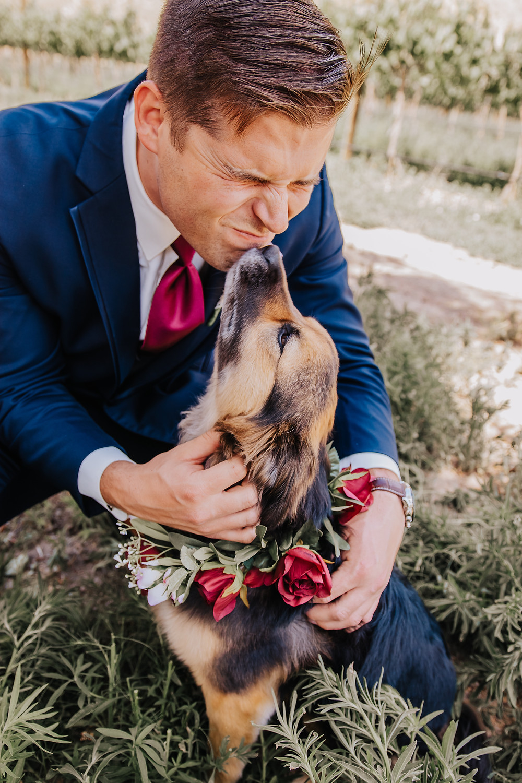 Dog friendly wedding tips Palisade Colorado Wine Country Inn groom and dog kiss