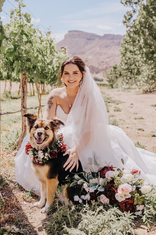 Colorado dog friendly weddings Palisade vineyard Wine Country Inn Mt Garfield