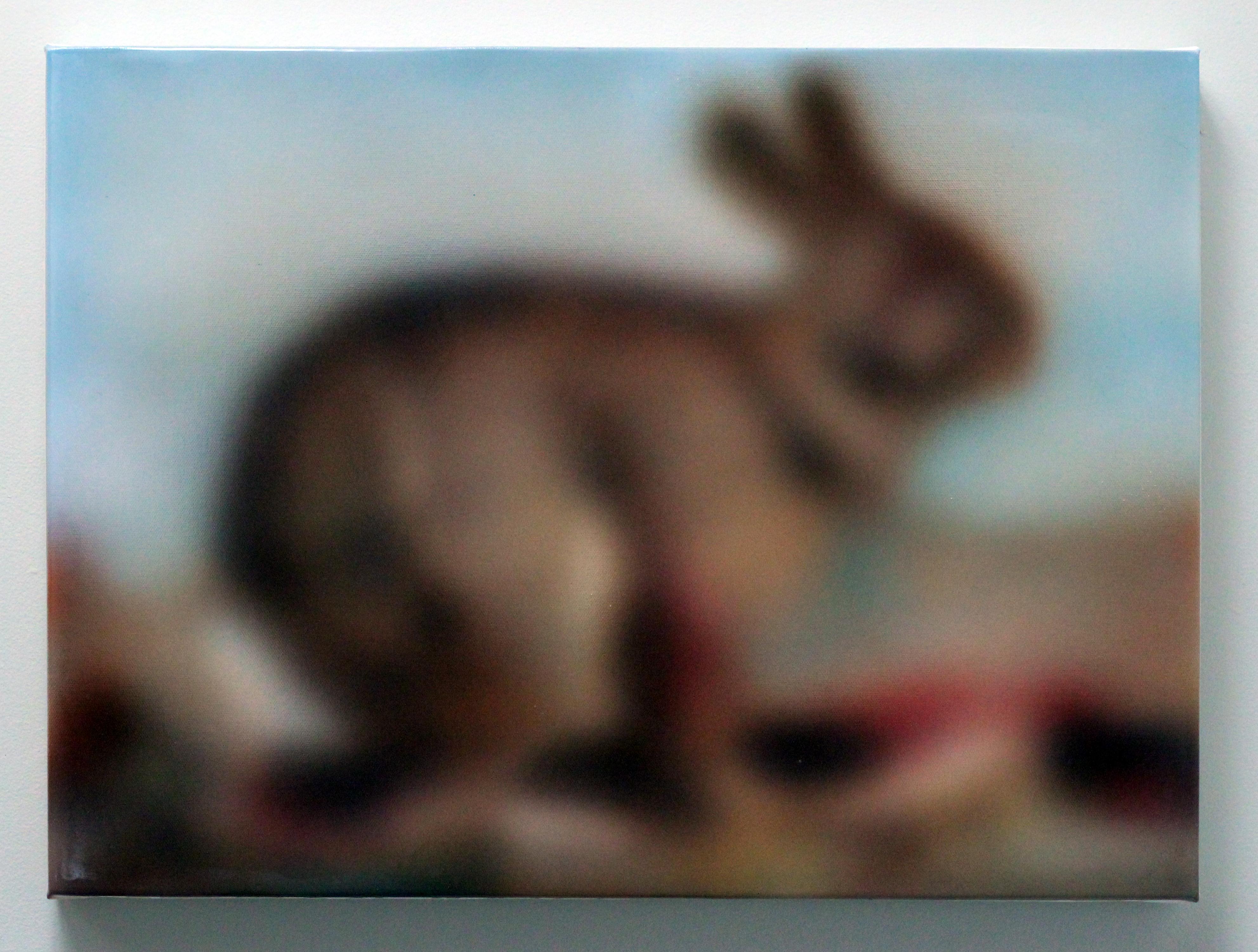Rabbit, 2015