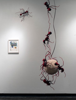 Ant Linkage (Red), 2013