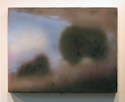 AMNH: Muskox, 2015