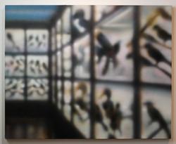 Lo Sepcola: Birds, 2015
