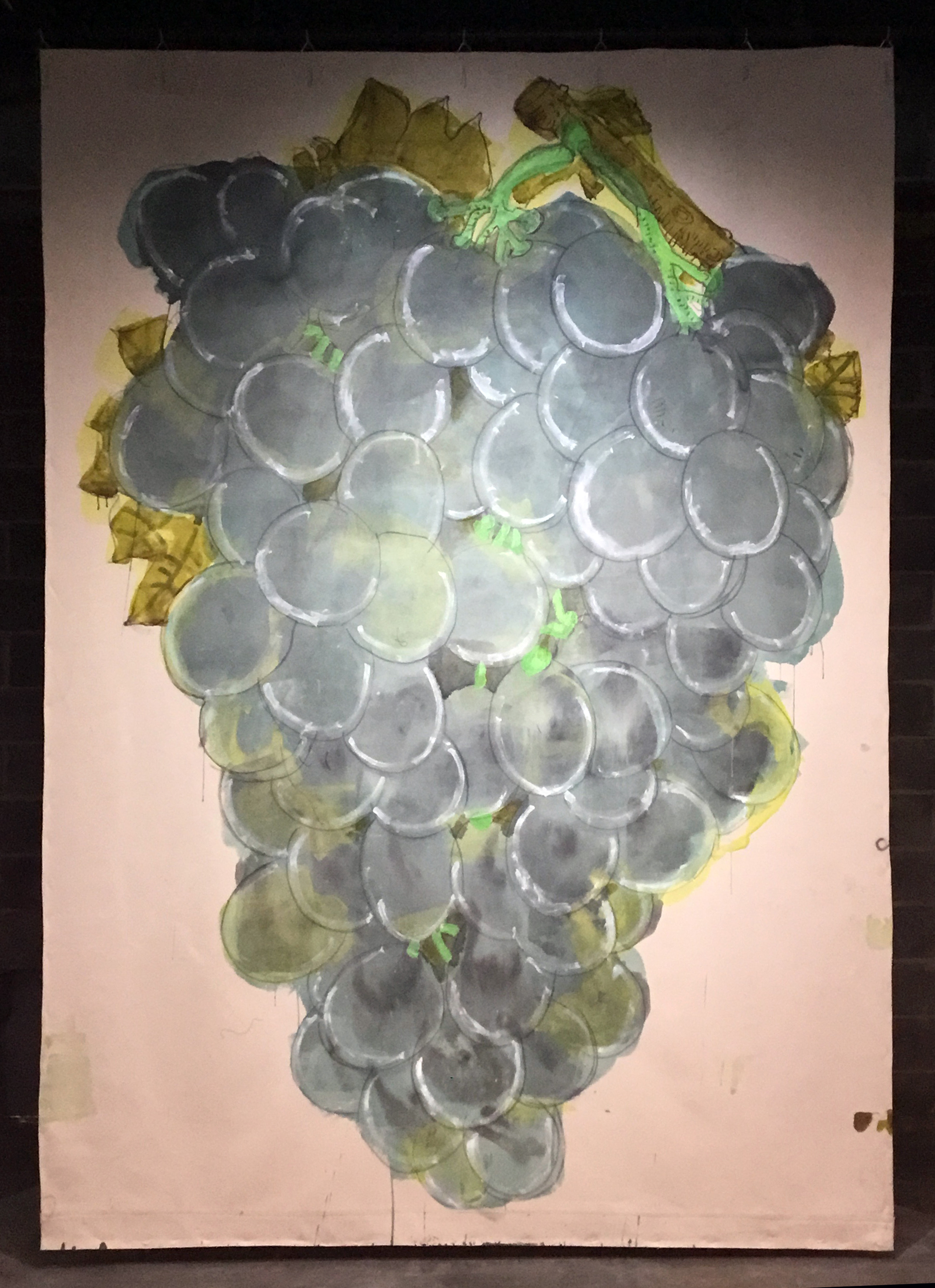 Field notes: Grapes, 2019