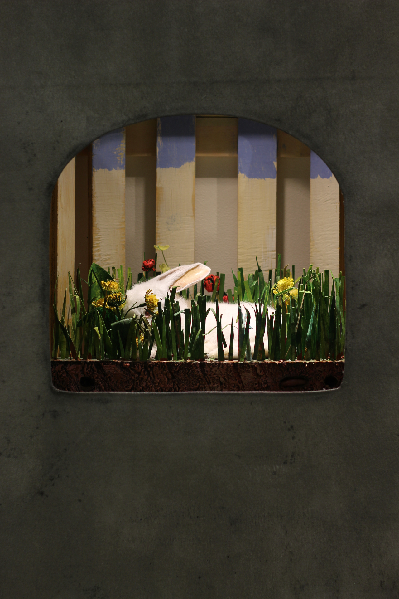 Rabbit and Meadow Diorama, 2015