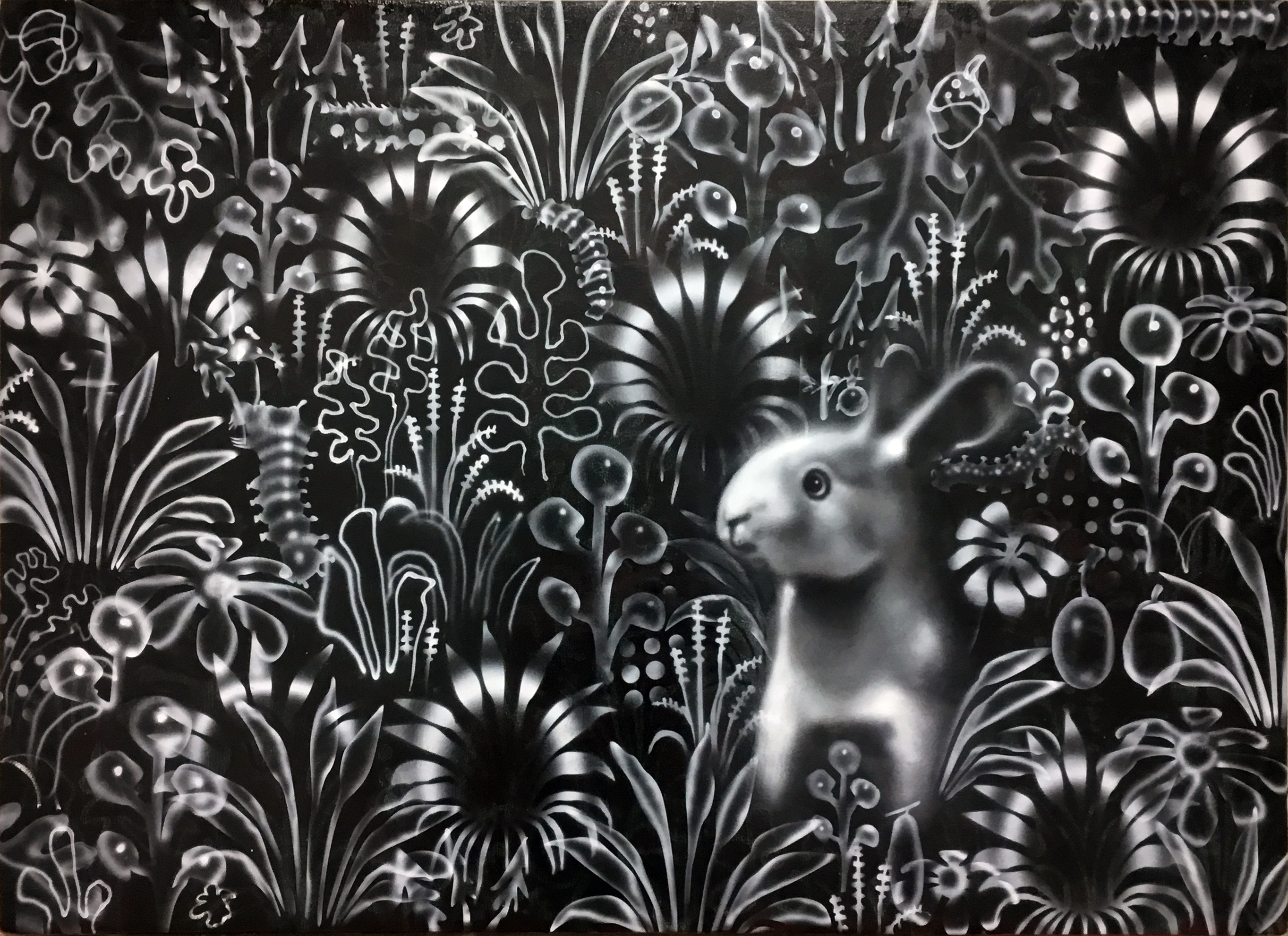 Black Meadow with White Rabbit, 2018