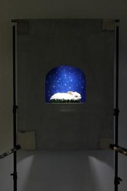 Rabbit with Stars Diorama, 2015