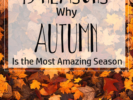 15 Reasons Why Autumn is the Most Amazing Season