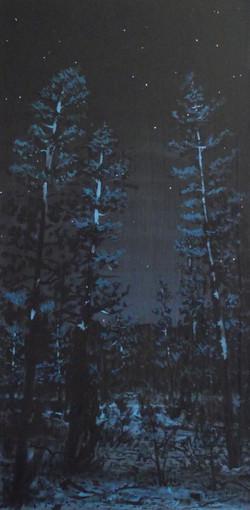 Indigo Trees Hold Back The Stars