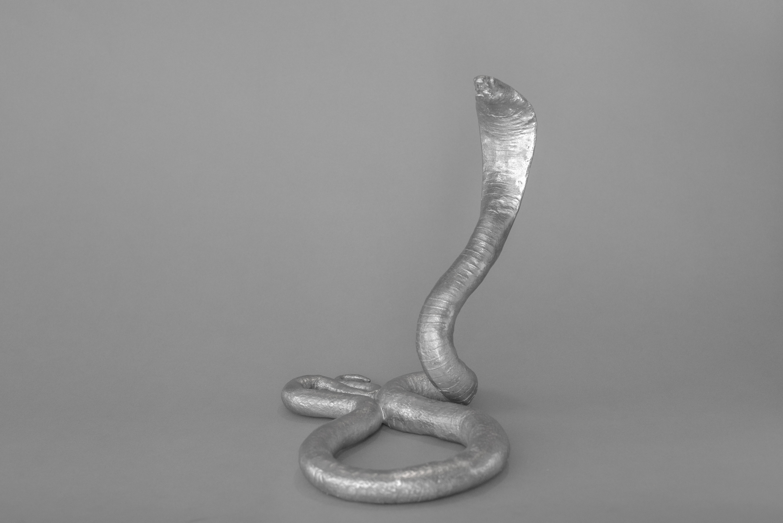 The Snake (2015)