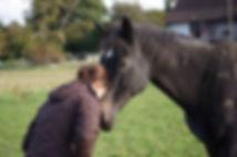 Physiotherapie, Akupunktur und Osteopathie für Pferde Antonia Siep