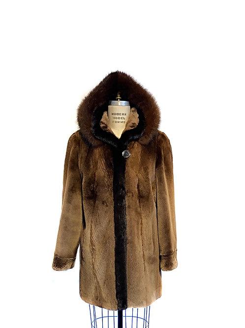 Manteau Loutre du Labrador rasé