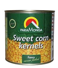 #4697 Sweet corn 2600 PM  300dpi..jpg