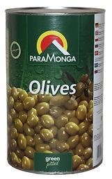 #0620 Olives green 4200 PM  300dpi..jpg