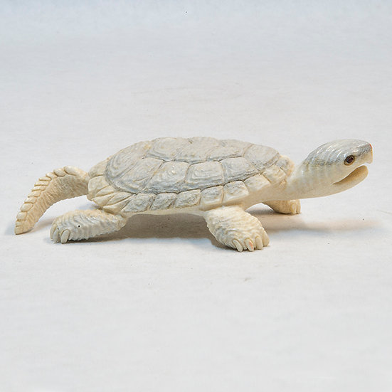Small Turtle (87:2)