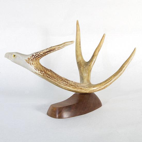 Deer Antler Eagle (C144)