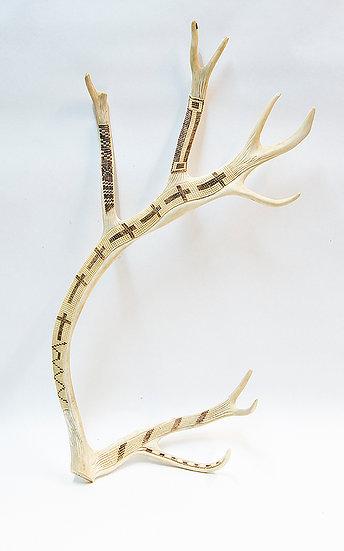 Antler Carving - Elk Antler (02:3)