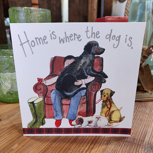 Occasions Greeting Card Alex Clark Dog