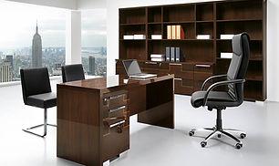 PISA HOME OFFICE_4g.jpg