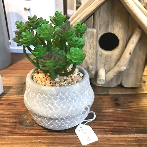 Faux Succulent in Grey Pot